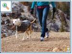 Магазин DOGS ACTIVE проф.амуниция для собак 43165234e25a987c1c5fc77ccad8771225cca7163798892