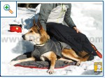 Магазин DOGS ACTIVE проф.амуниция для собак 985c38e32388d8ec736f99801eb8901d25cca7163798885