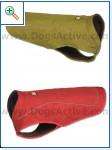 Магазин DOGS ACTIVE профессиональная амуниция для собак B8d6ed1b2395eac19a3fddb87b8f580925cca7163971576