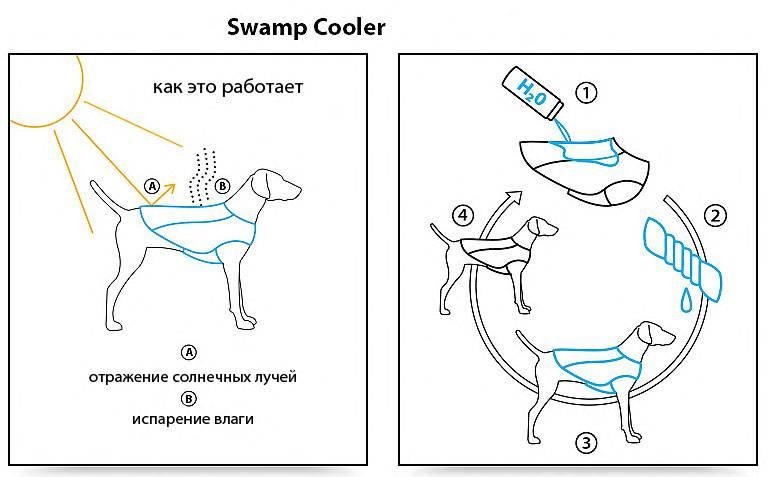 Магазин DOGS ACTIVE профессиональная амуниция для собак 36d76066dbec9518ca4a6cdfa7f2fe3525cca0180054185