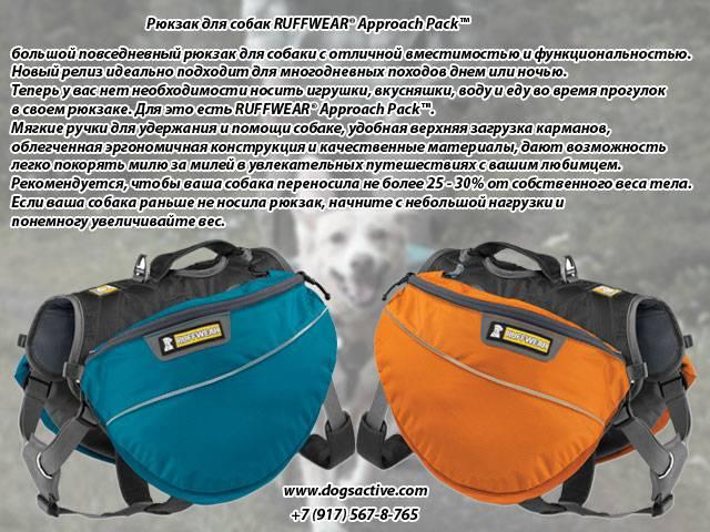 Магазин DOGS ACTIVE профессиональная амуниция для собак Fb81c4eaae4c111a5ff8c56c65f3b02525cca0179169577
