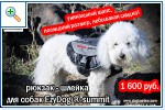 Магазин DOGS ACTIVE профессиональная амуниция для собак 6483a8b532708af99f95d3bfb72e6e1d25cca0199257864