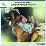 Магазин DOGS ACTIVE профессиональная амуниция для собак - Страница 2 Ee9bae6fbc1dbe546cdfa6e45b50bb5b25cca0186626120