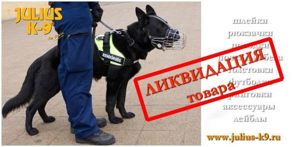 Магазин DOGS ACTIVE профессиональная амуниция для собак - Страница 2 90743c142201c6f181b2bb5596687d8025cca0205450375