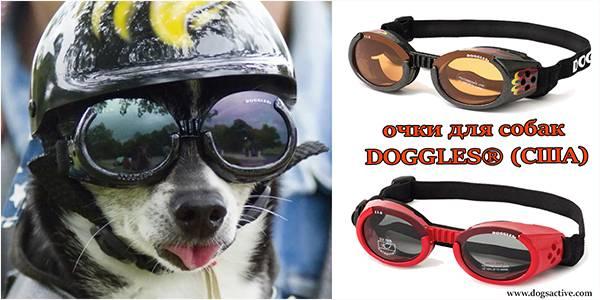 Магазин DOGS ACTIVE профессиональная амуниция для собак - Страница 3 345c483cd4603ef3262e16aed0caacd525cca0232763641