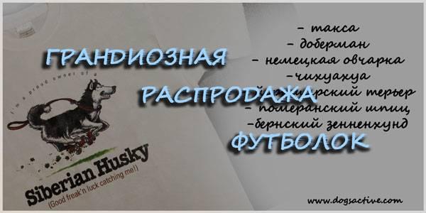 Магазин DOGS ACTIVE проф.амуниция для собак - Страница 3 3a94938992c888aa3baa481dbc113100b94499220828537