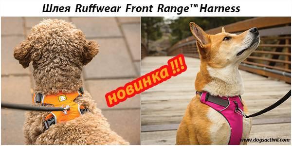 Ruffwear® (США)-легендарная амуниция от американских профи - Страница 2 8395e8ecb2163540f5ae3d44130536b825cca0210044305