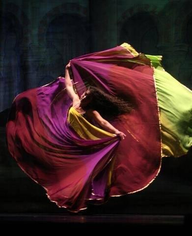 Вейл.Платок для танца живота. D8c5927228d1d57f191bc23ec2facf4a3d8ecf221505516