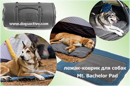 Магазин DOGS ACTIVE проф.амуниция для собак - Страница 3 E0a176727ee9e67396bbb94cdd44007625cca0219704122