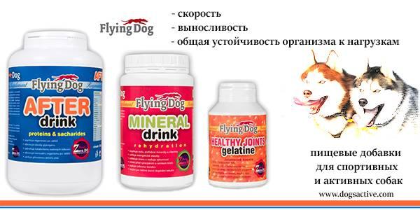 Магазин DOGS ACTIVE профессиональная амуниция для собак - Страница 3 F275b96a48805b8e7b792017ec5cd3f125cca0231209612