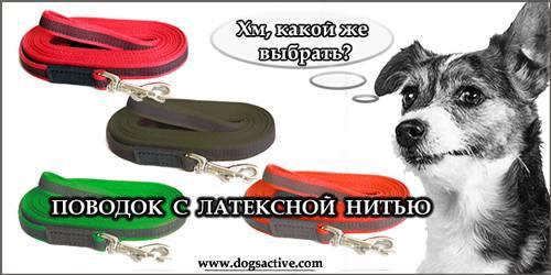 Магазин DOGS ACTIVE профессиональная амуниция для собак - Страница 3 Fab2763cfdb9d5cab2532695bf1c409725cca0256530796