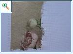 Айнино рукотворчество - Страница 8 F7b04d3ed9e6a15b7ac65a2a96f1ee2a2e35b2247292623