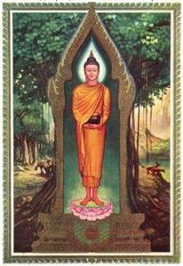 Значение дней недели в Буддизме при рождении D9d5a03da209d01a37e08dea8e4599605d50b6331449606