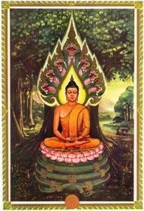 Значение дней недели в Буддизме при рождении E0d52cde9393672c185bd4e84b55577b5d50b6331449606