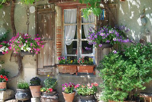 Des fenêtres d'hier et d'aujourd'hui. 3579948433_5447ab6a11
