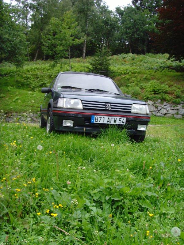[totor54] 205 GTI 1.9L Gris Magnum 1991 SNV30691
