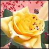 Аватары с цветами Flower21