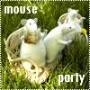 Аватары с животными Mo14