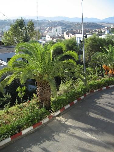 صور لبعض ولايات الشرق الجزائري 282708576_0a736b6e51