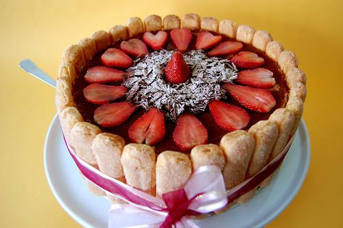 Chocolate cakes 417611728_c114263a5c
