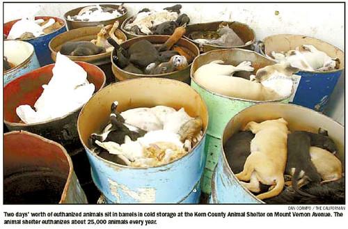 περί αγοραπωλησιών ζώων 352211196_b8477449d6