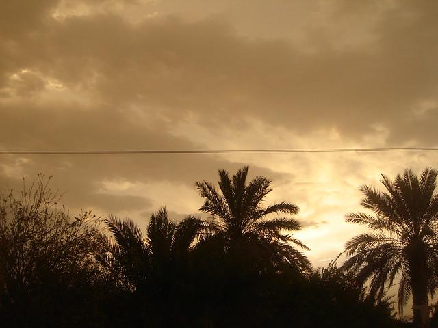 صباح الخير  - صفحة 4 386280710_48c5e0a907_z
