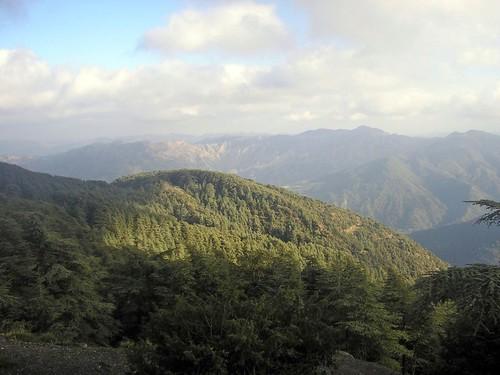 جبال الشريعة من اشهر المناطق السياحية فى الجزائر ر*س*خ*ع 68869791_37d5b7ba9e