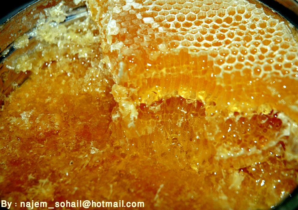 فوائد العسل 462306272_5b6f57b438_o