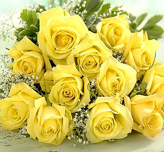 Từ khi sinh ra mỗi người là một bông hoa đẹp... 521832838_5545045a70