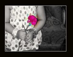 زهور بجد جميله 461960113_fe9f565901_m