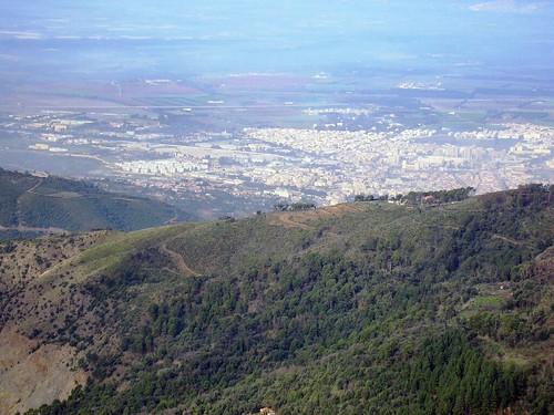 صور غابات الشريعة الجزائرية الساحرة 40692462_0db4ef3f29