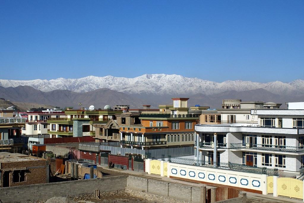 Afghanistan: un lionceau installé sur la terrasse d'un riche 306387716_1b2985e255_b