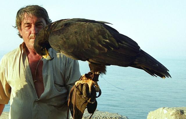 Comparação do tamanho de águias  com relação ao homem. 301272265_c724702034_z