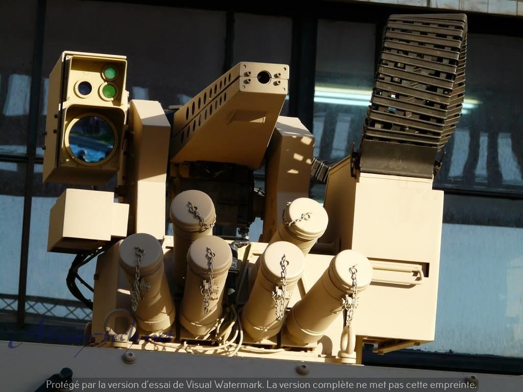 الصناعة العسكرية الجزائرية عربات Nimr(نمر)  - صفحة 6 31704139882_3718cb468c_b