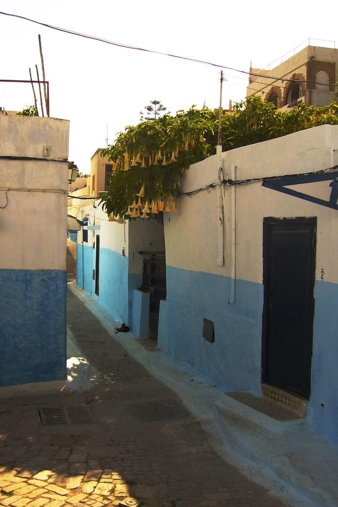 المدن المغربية المحتضنة لكاس العالم للاندية بالمغرب (1) :الرباط 1345825080_3f493f2c51_b