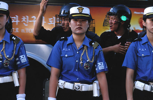 Gangnam-gu Traffic Girl Picture 1448464738_9da693a23b