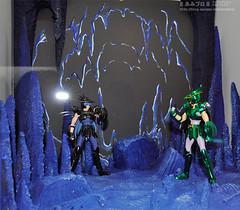 [Imagens] Cisne e Dragão Negro. 5115013902_c07a303091_m
