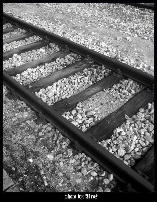 Crno-bela fotografija 1084758554_9904384b81_o