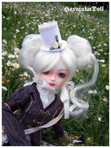 HarajukuDoll-la couture de killingsissy aka kscness - Page 2 2483885162_3c5c35f454