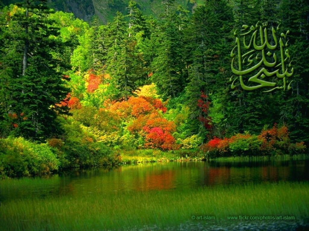 مجموعة تصاميم اسلامية من مختاراتى 2048419570_8a18008454_o