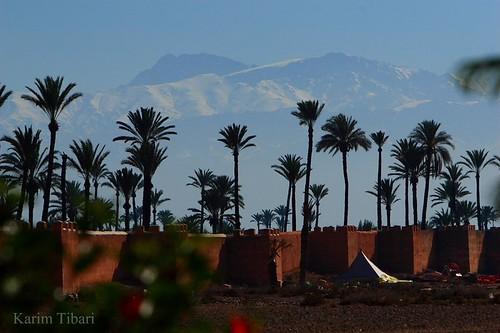 المدن المغربية المحتضنة لكاس العالم للاندية 2099844615_c71775eb3d