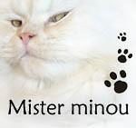Mister Minou