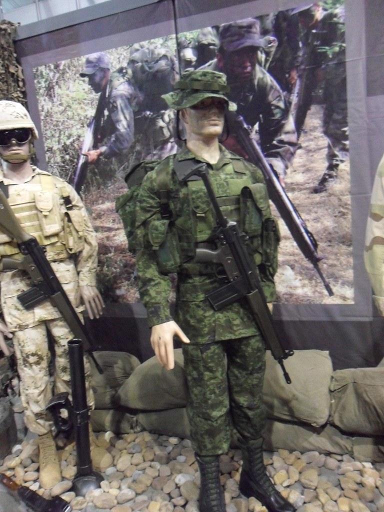 Exhibicion itinerante del Ejercito y Fuerza Aerea; La Gran Fuerza de México PROXIMA SEDE: JALISCO - Página 6 5818026591_fc763c1001_b