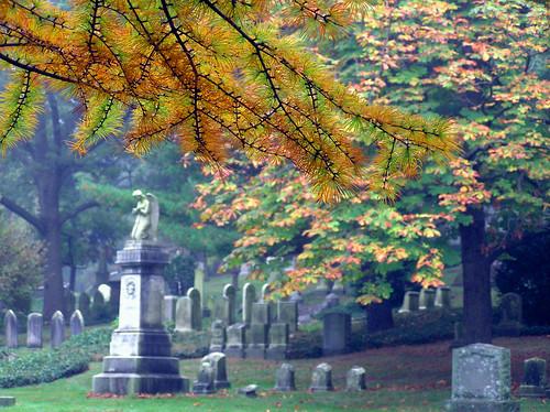 Autumn 1636128248_691d6634a8