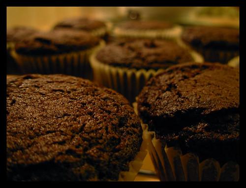 Cupcakes al Cioccolato 1952470278_24c0da1a07