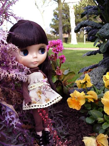 [Avril 2008] Des Blythes et des Fleurs 2394338973_b1abd6d8c4