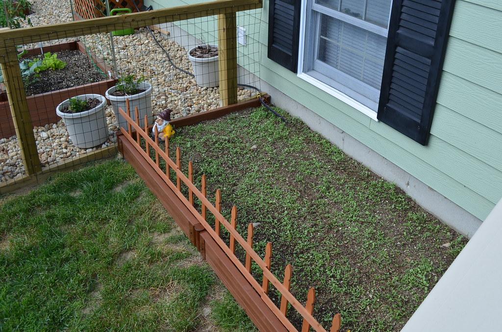 New garden from Dartmouth,MA (pics) 5795040006_bf08ac58e8_b