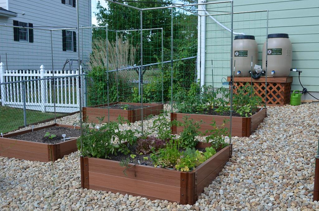 New garden from Dartmouth,MA (pics) 5795035954_171215098e_b