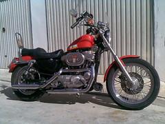 Tu moto moderna o de uso habitual - Página 5 4106273617_f298ff53c8_m