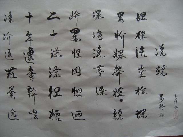 Chữ Nôm mới (Chữ Nôm VN) - Viên Như (Bản beta) 4087726355_30b87a2e89_z